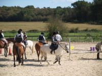 enseignement poney1