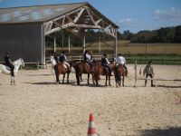 enseignement poney2