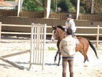 enseignement poney4